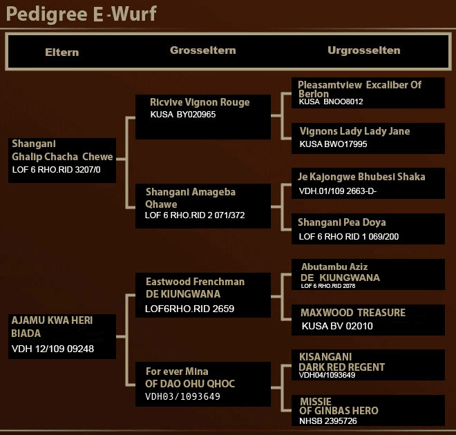 E-Wurf Pedigree